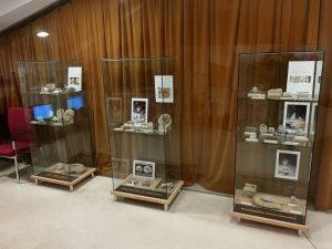 Exposición de ammonites en el Museo de Ciencias Naturales de los Yébenes