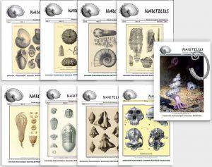 """La revista de la Asociación Paleontológica Alcarreña """"Nautilus"""". Portadas."""