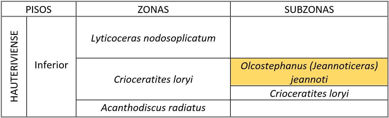 Subzona Jeannoti (Hauteriviense inferior)